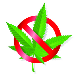 Legal Marijuana Use, Disability and Employment Discipline